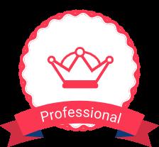 Professional UI Tools